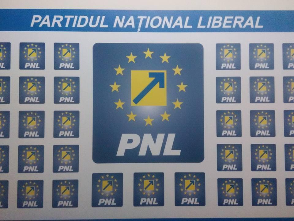 newsar.ro PNL sigla logo